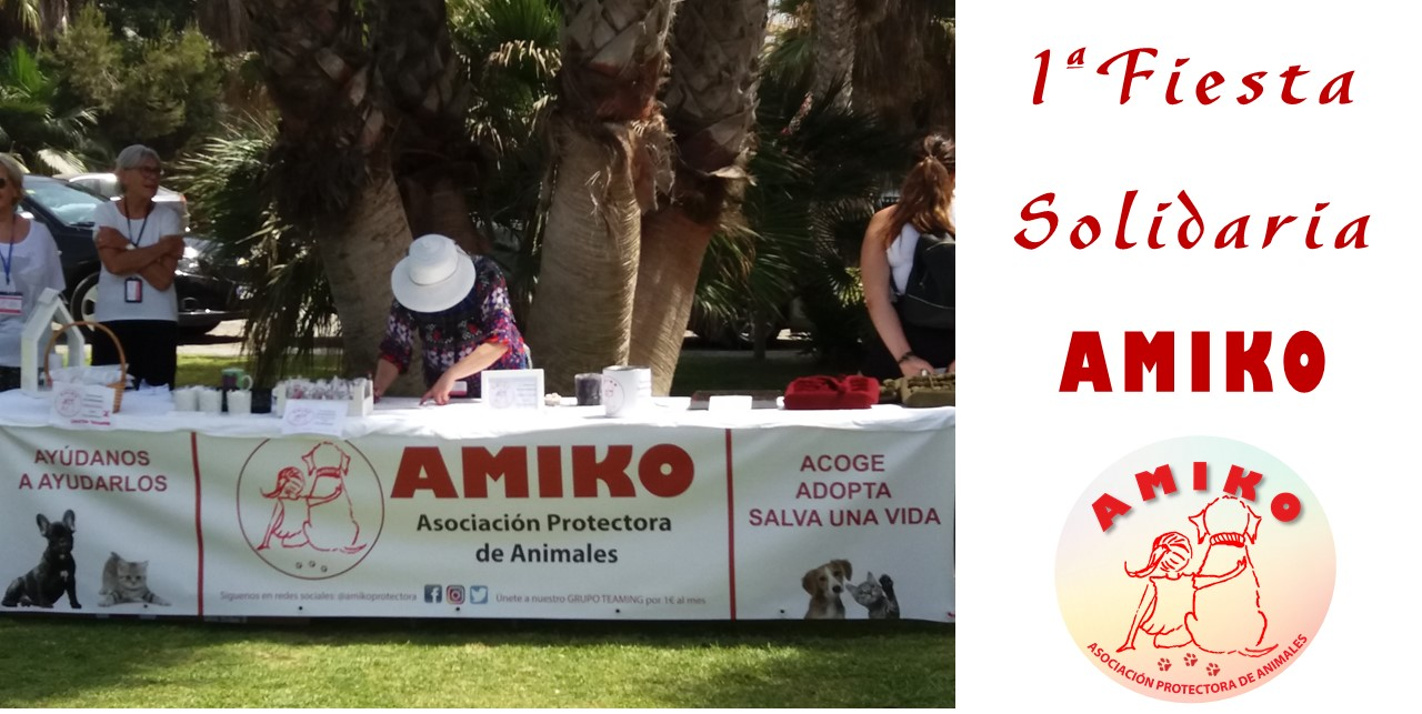 1ª Fiesta Solidaria Amiko