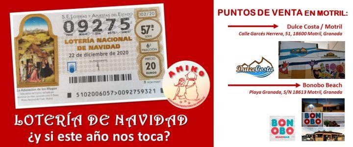 Loteria Navidad AMIKO 2020