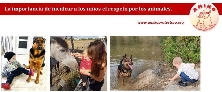 La importancia de inculcar a los niños el respeto por los animales.